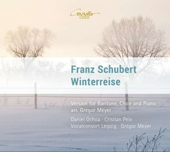 Winterreise-Daniel Ochoa